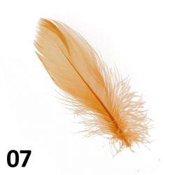 Peříčka na nehty č.07 - 5 ks